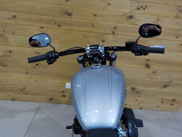 2020 Harley-davidson FXBRS BREAKOUT S (114) (SOLID) Barracuda Silver
