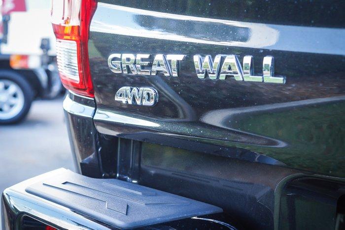 2019 GREAT WALL STEED