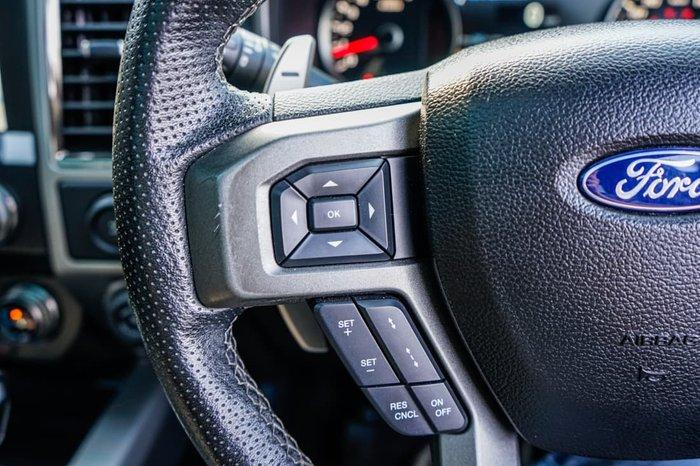 2017 Ford F150 Raptor (No Series) Grey