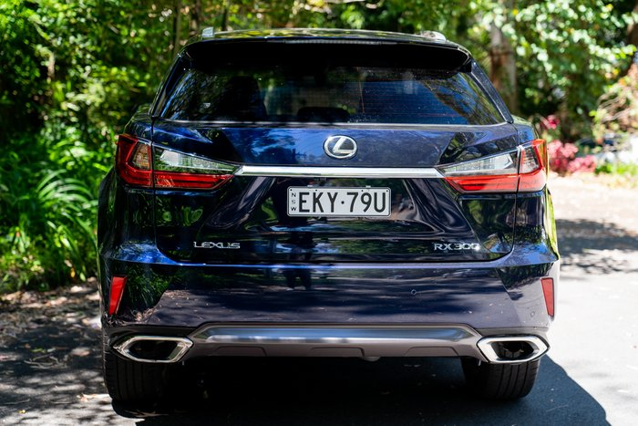 2019 Lexus RX RX300 Luxury AGL20R DEEP BLUE