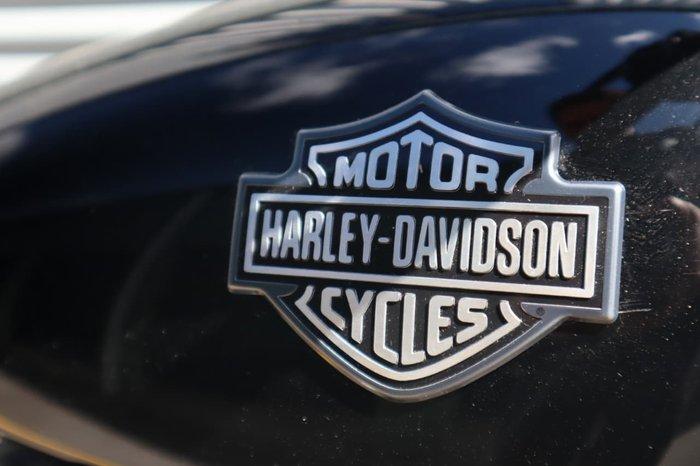 2017 HARLEY-DAVIDSON STREET 500 (XG500) null null Black