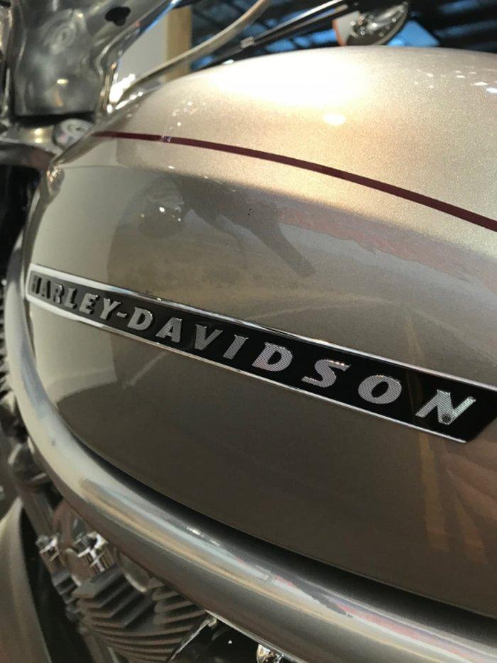 2009 HARLEY-DAVIDSON V-ROD 1250 (VRSCAW) null null Silver