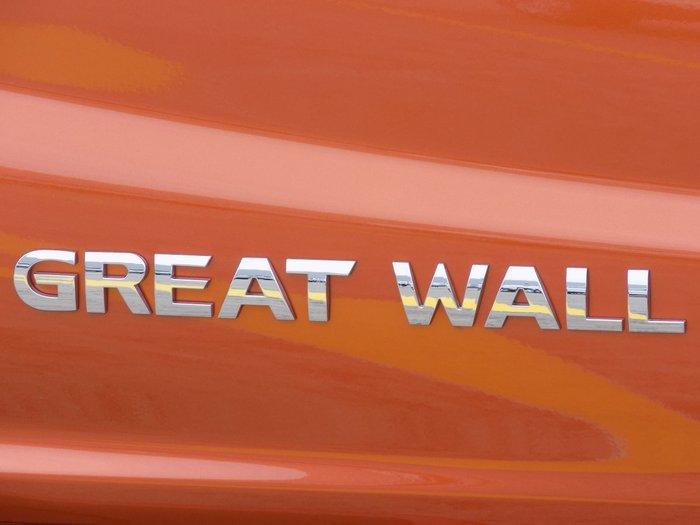 2019 Great Wall Steed NBP 4X4 Orange
