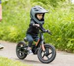 2021 Harley-davidson 2021 IRONe12