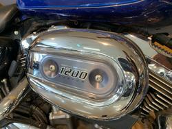 2015 Harley-davidson XL1200C 1200 CUSTOM Blue